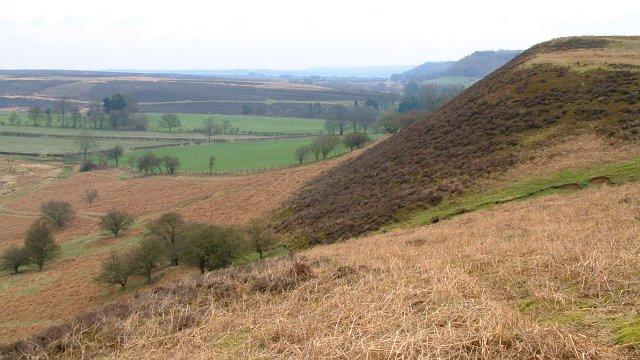 Tabular Hills, North Yorkshire Moors - geograph.org.uk - 218258