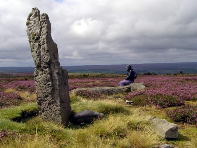 The High Bridestones, Sleights Moor - geograph.org.uk - 537678