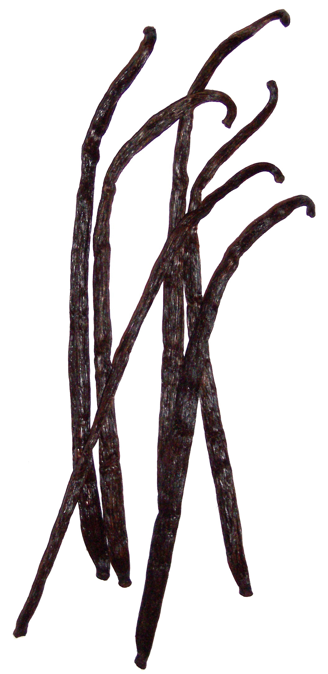 http://upload.wikimedia.org/wikipedia/commons/3/30/Vanilla_6beans.JPG