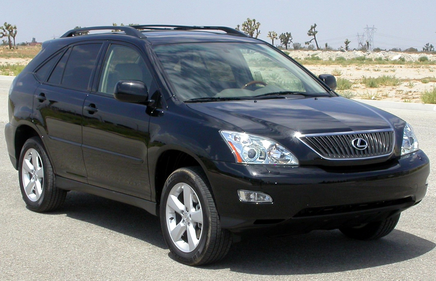 rx330 lexus 2004 lexus rx330 toupeenseen. Black Bedroom Furniture Sets. Home Design Ideas