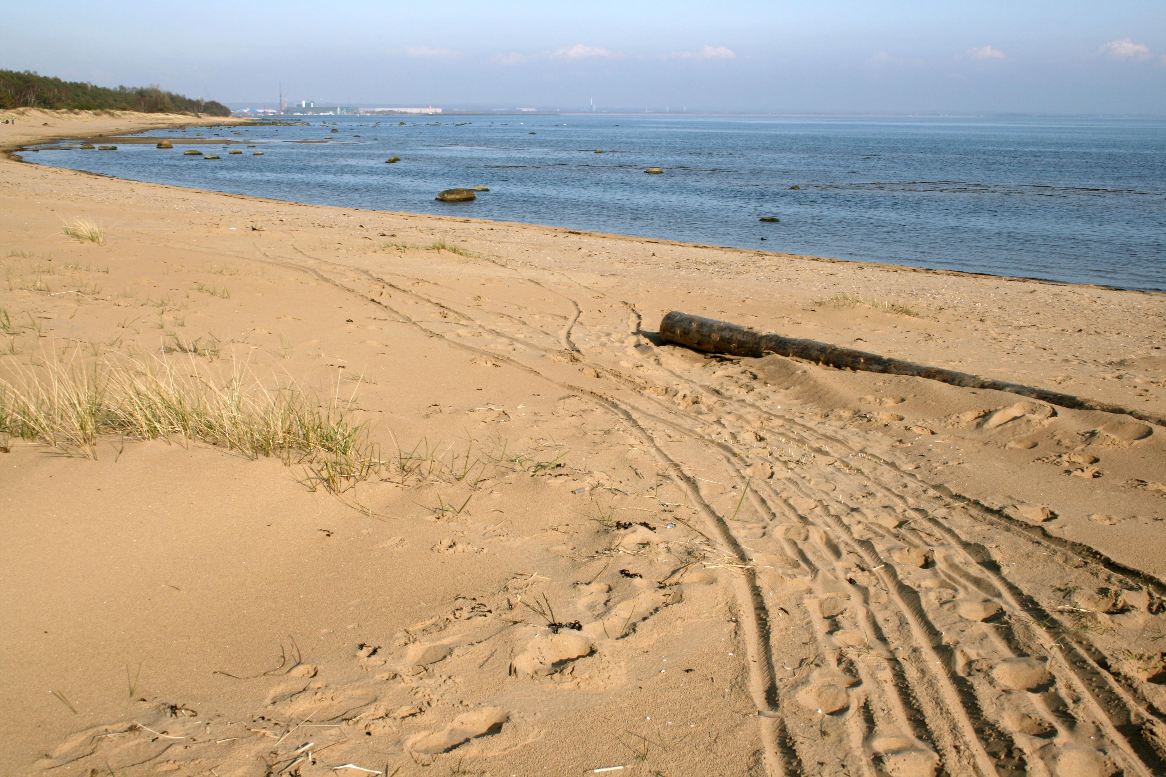 File:Beach in Halmstad.jpg - Wikimedia Commons