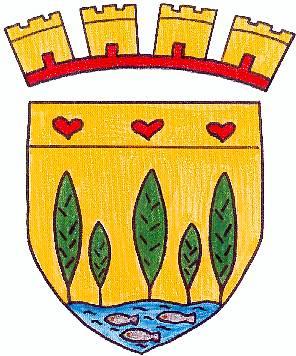 Blason du village de Plachy-buyon. D'or à cinq peupliers de sinople, rangés en fasce, ceux des flancs et celui du milieu plus grands que les deux autres, posés sur une rivière ondée d'azur, mouvant de la pointe chargée de trois poissons d'argent, 2 et 1; au chef du champ chargé de trois cœurs de gueules.  Le blason de Plachy-Buyon a été créé en 1979 par Mme Antoinette Wallet, qui fut maire de la commune jusqu'en 1983. Les peupliers évoquent les arbres qui bordent la rivière la Selle, elle-même représentée par la rivière ondée et les poissons d'argent. L'origine des trois cœurs de gueules a été oubliée. Elle n'est ni traditionnelle ni seigneuriale.