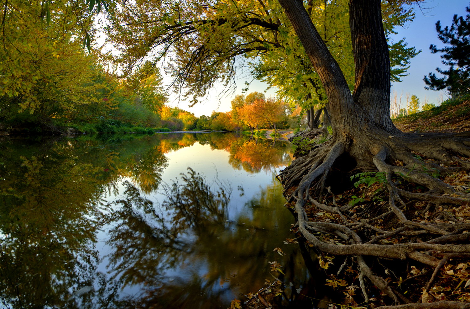 https://upload.wikimedia.org/wikipedia/commons/3/31/Boise_River_Autumn.jpg