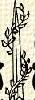 Borostyán (heraldika).PNG
