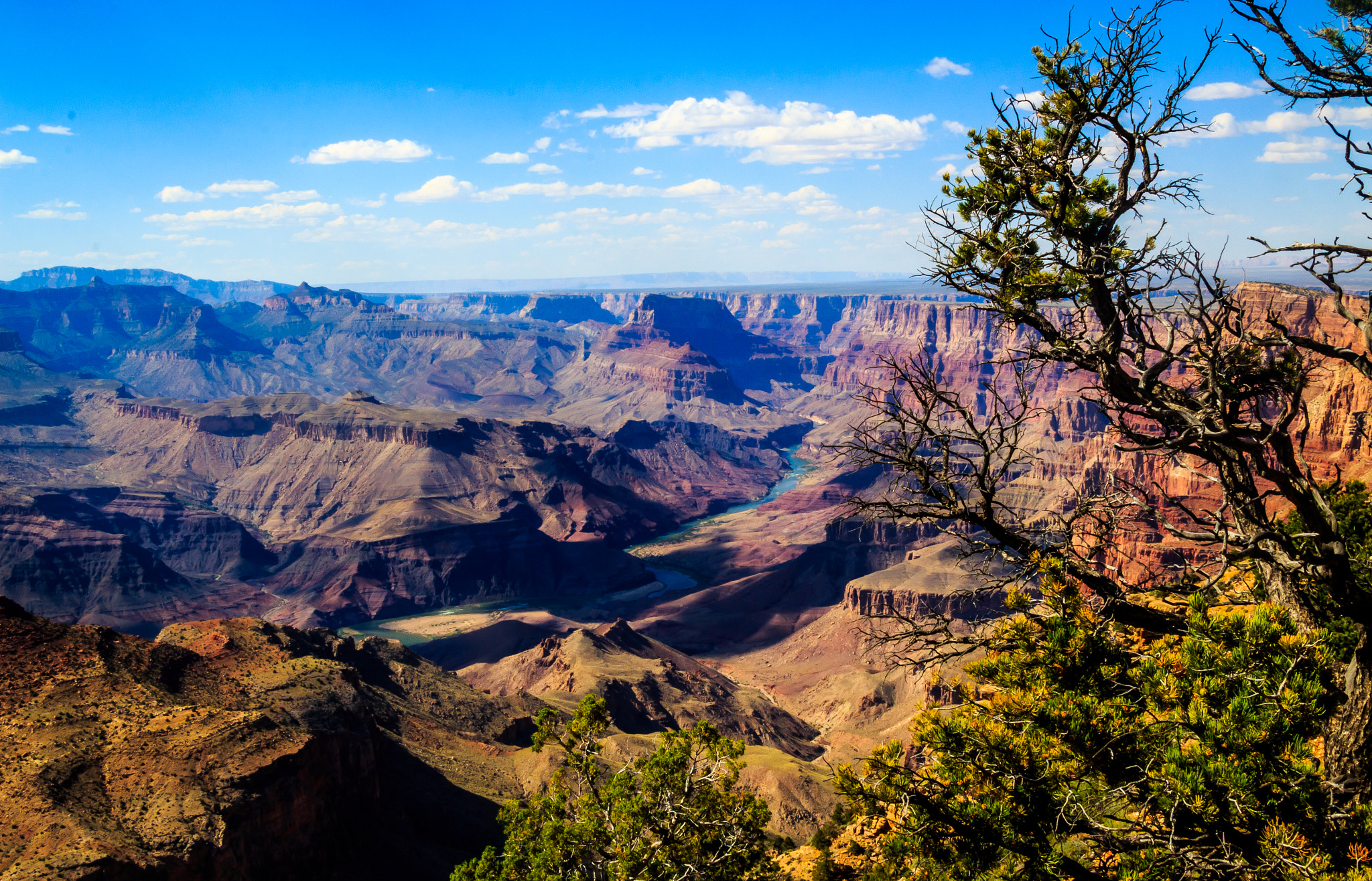 Grand Canyon Wikipedia
