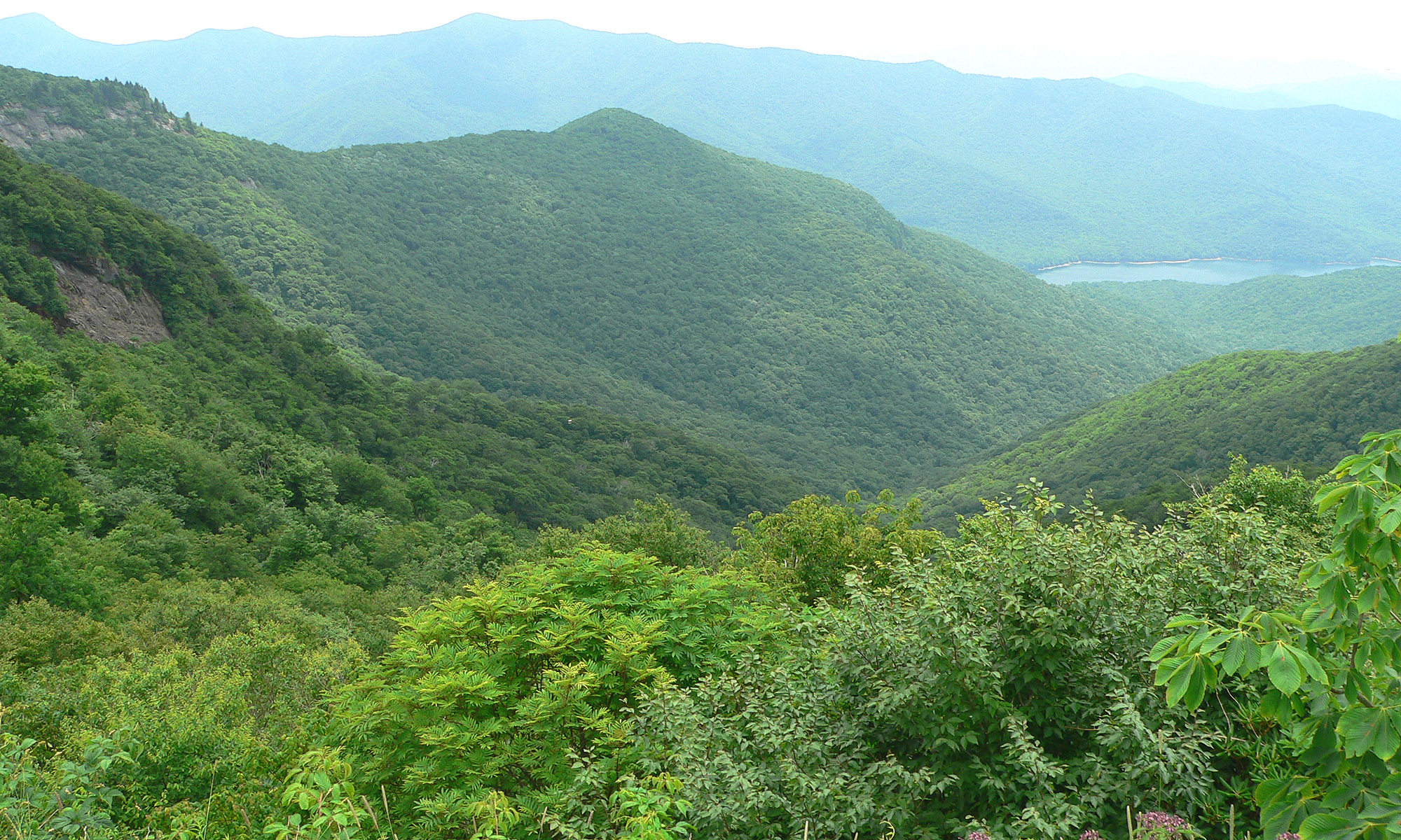 Looking down from the Blue Ridge Parkway near ...