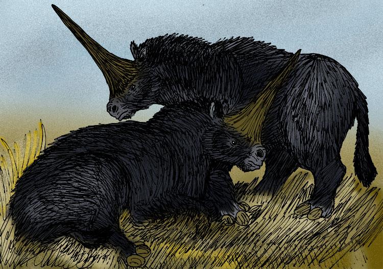 Elasmotherium sibiricum black.jpg