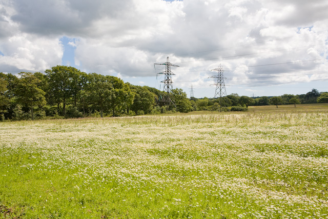 File:Field and pylons south of Belmont Copse, nr Wootton Common - geograph.org.uk - 518579.jpg