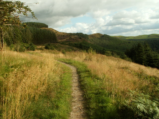 Footpath and forestry, Llechwedd gwinau - geograph.org.uk - 40030