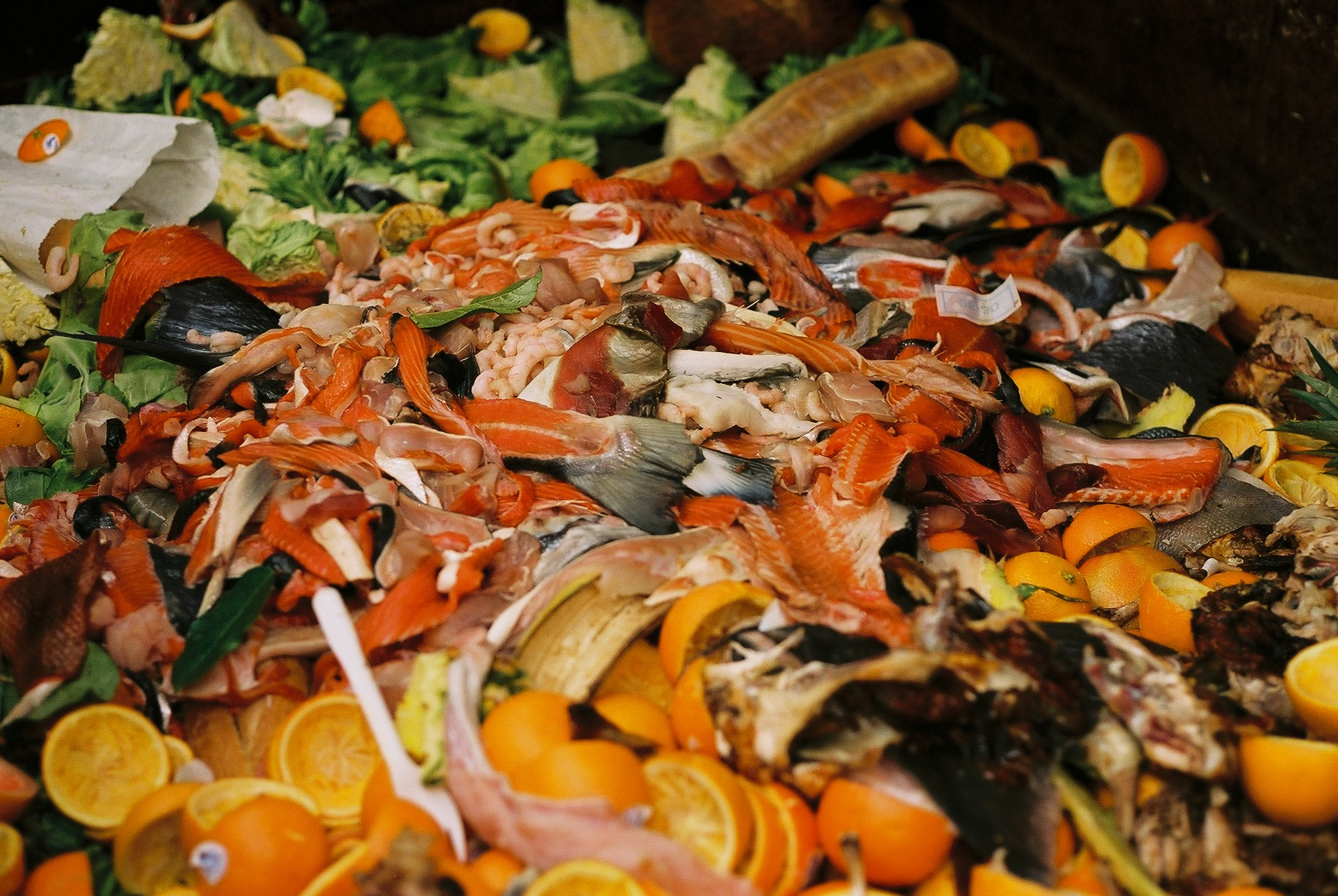 Kitchen Food Waste