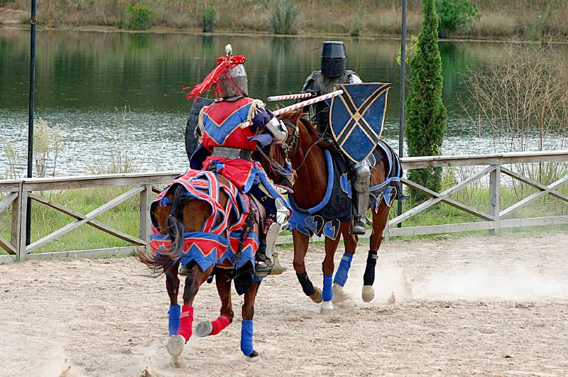 Image result for joust