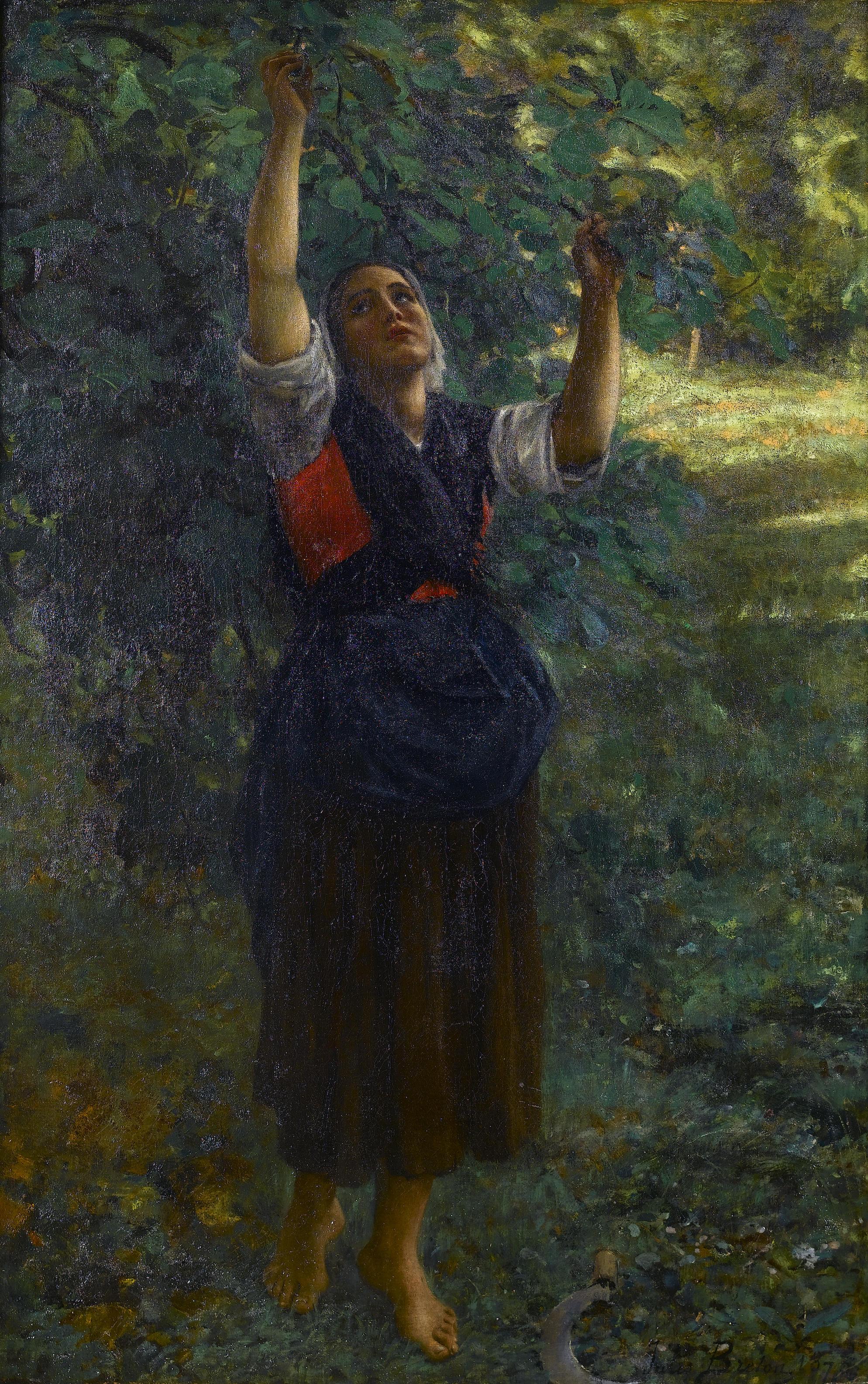 File:Jules Breton - Cueilleuse de figues.jpg - Wikimedia Commons