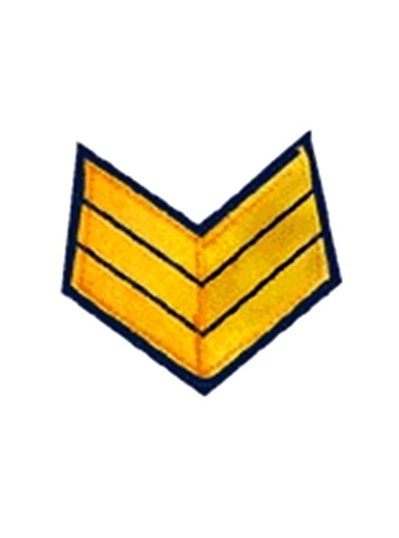 Army First Sergeant Insignia