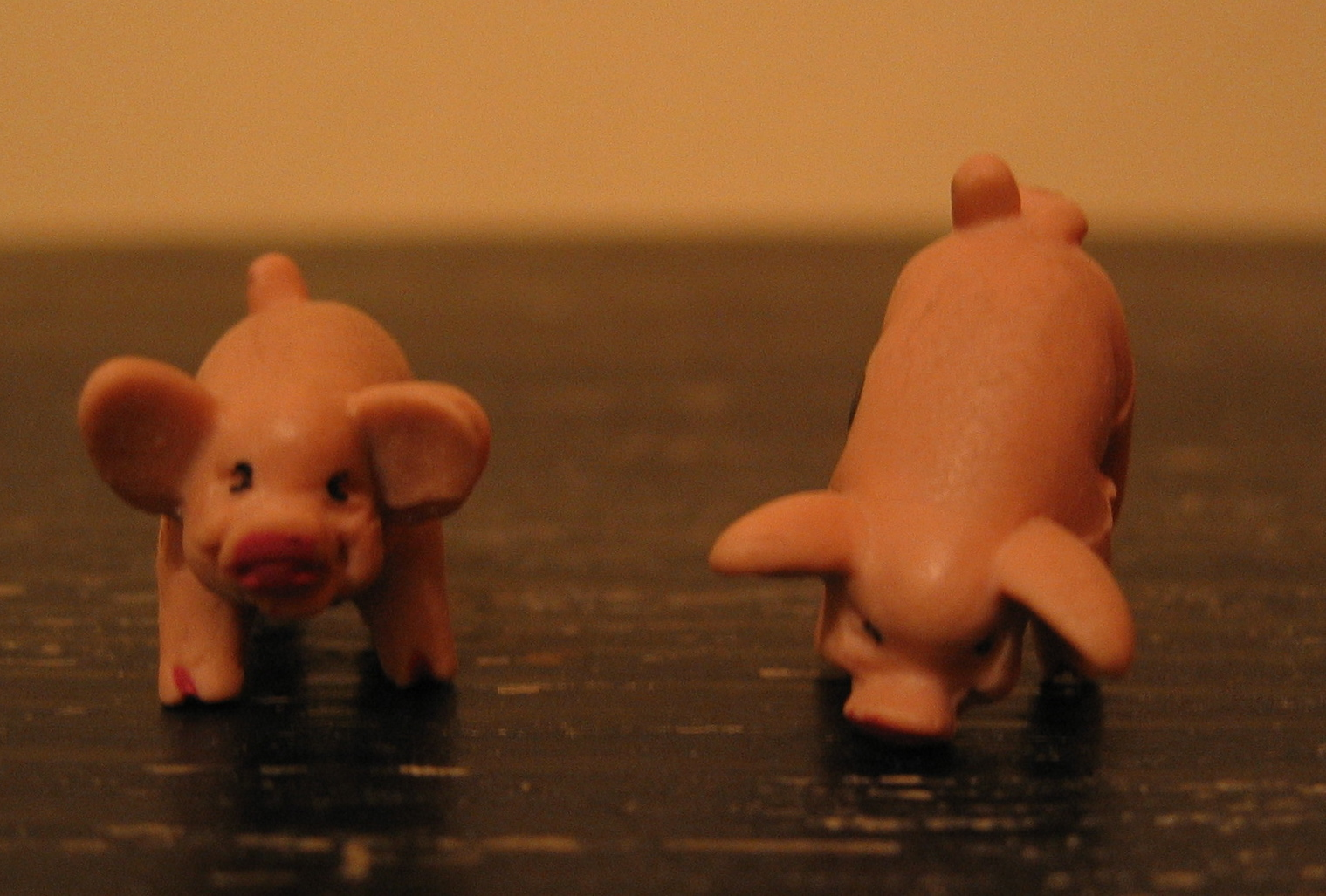 File:Pass pigs dice jpg - Wikimedia Commons