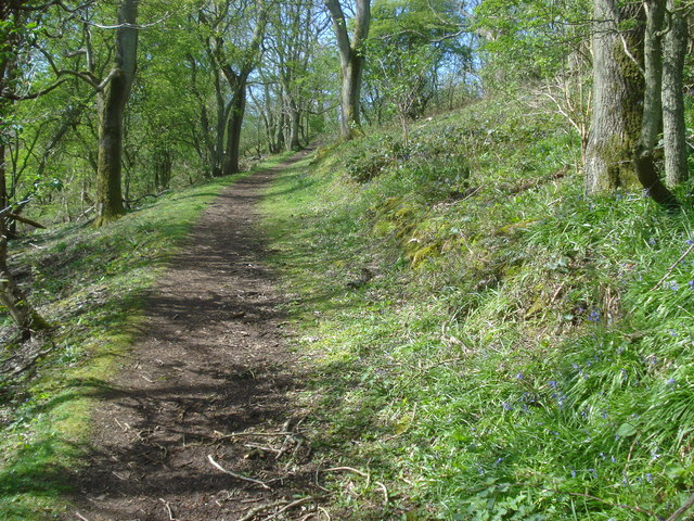 Path climbing Hollybush Hill - geograph.org.uk - 915899