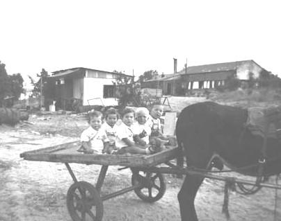 ילדים בטיול