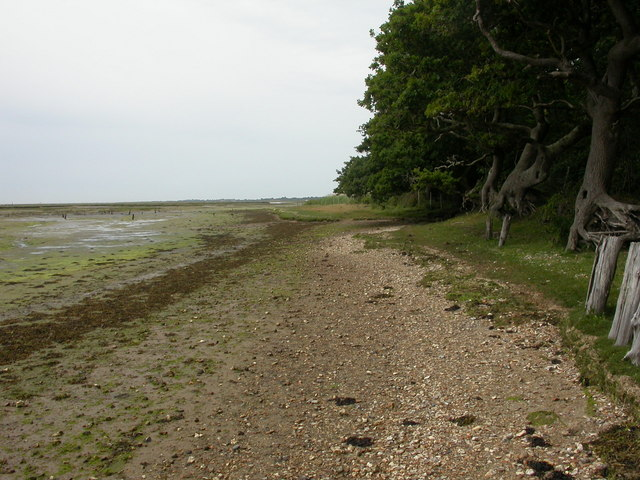 Pylewell, foreshore - geograph.org.uk - 1376115