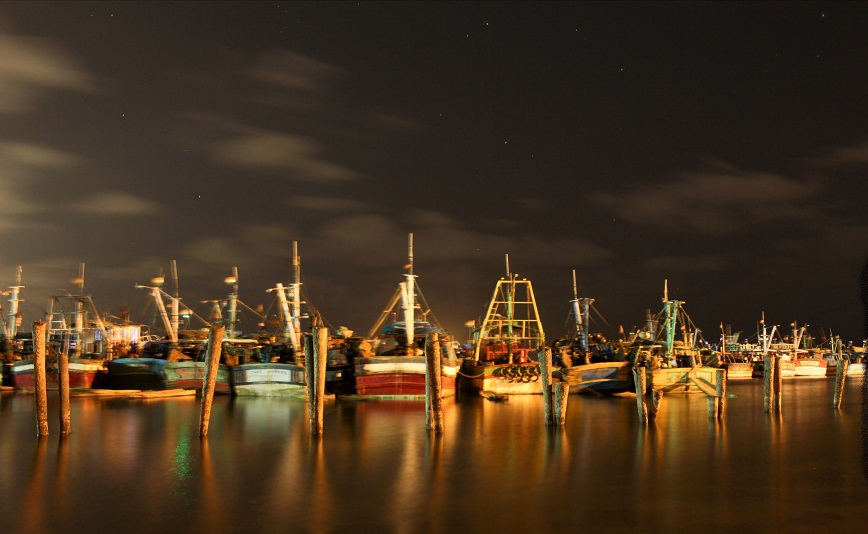 Royapuram fishing harbour - Wikipedia