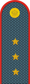 Russian police senior warrant officer.png