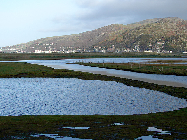 Saltmarsh, lagoons and drainage channels - geograph.org.uk - 1088674