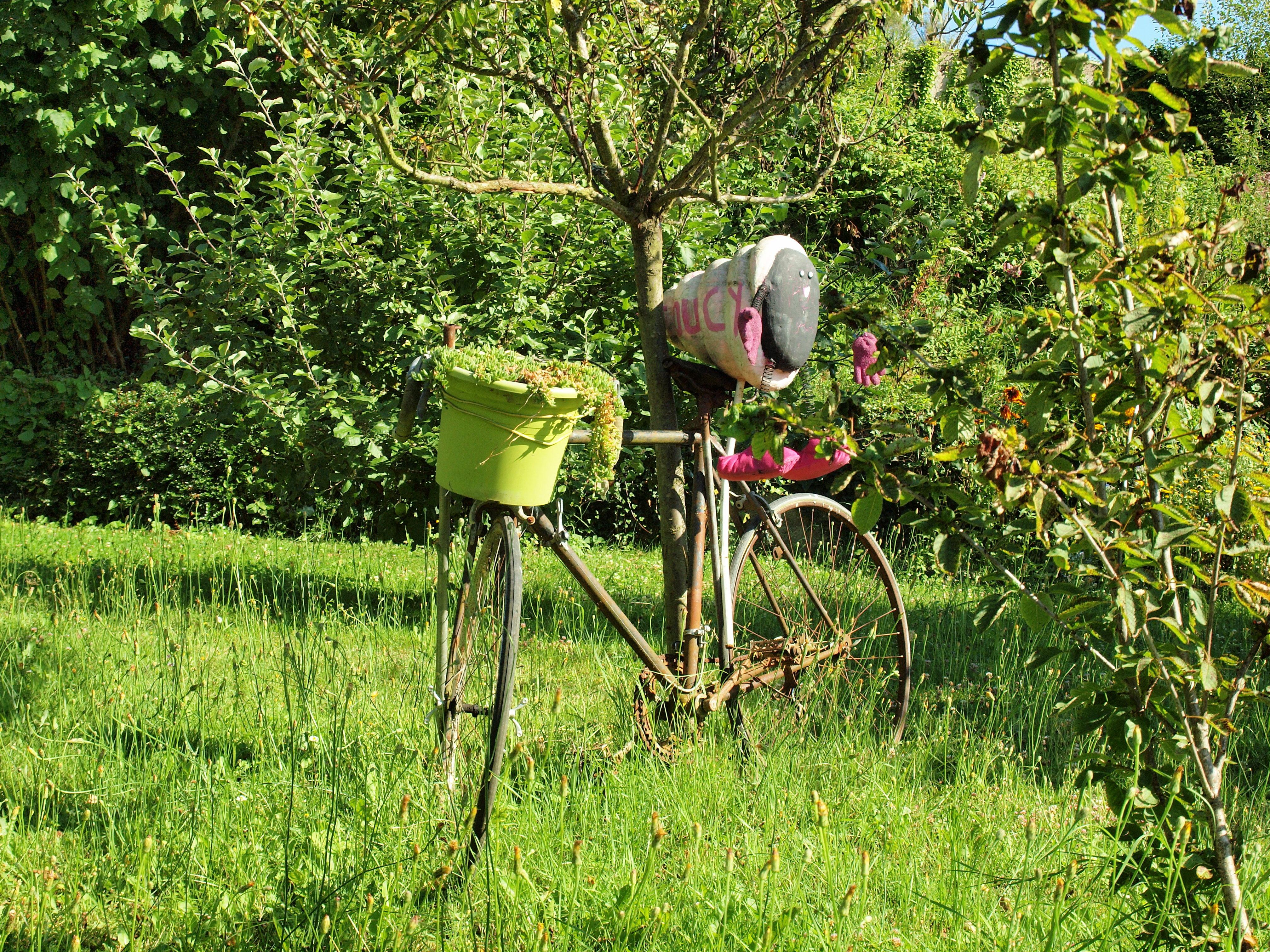 File:Toucy-FR-89-décoration de jardin-3.jpg - Wikimedia Commons