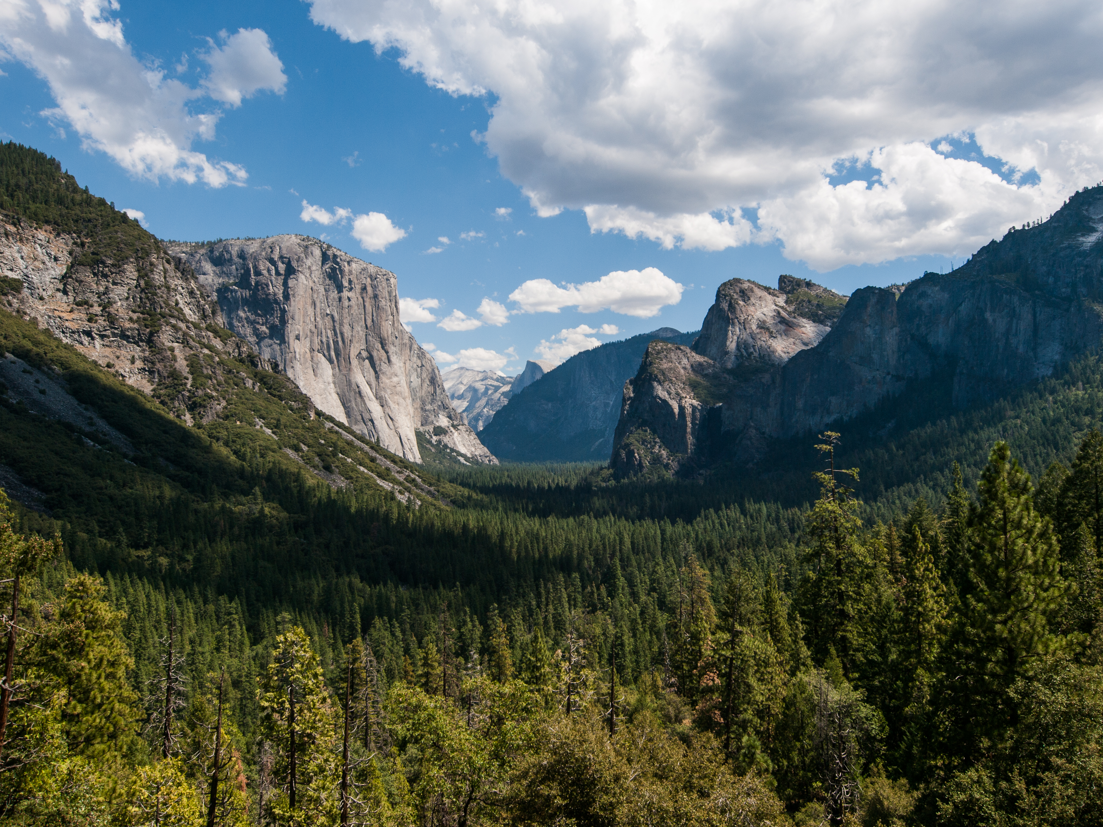 descriptive essay yosemite national park Of this glorious range the yosemite national park is a central section, thirty-six   it was in that essay that muir described meeting ralph waldo.
