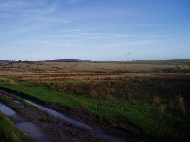 Upper Ceiriog Way - geograph.org.uk - 281751