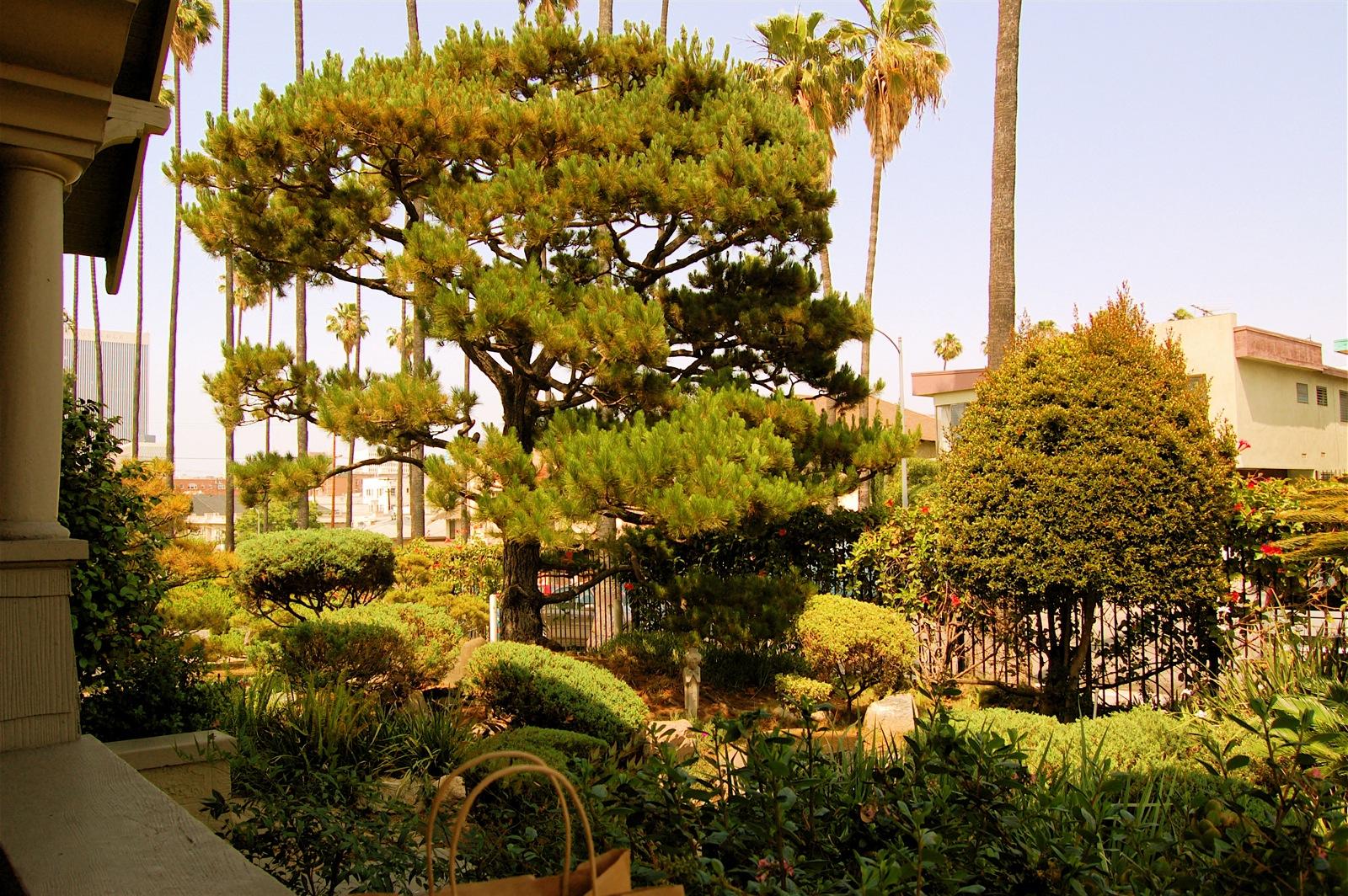 Nechung Dharmapala Center - Los Angeles