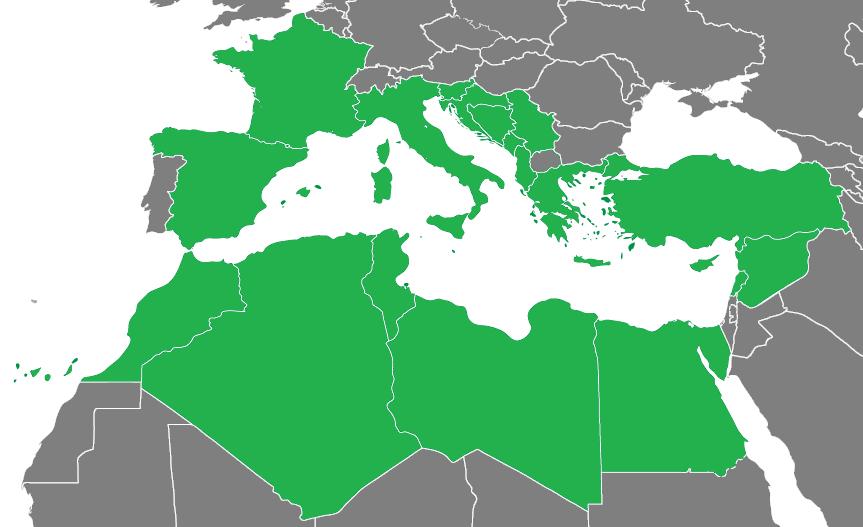 Description 2009 mediterranean games participating countries