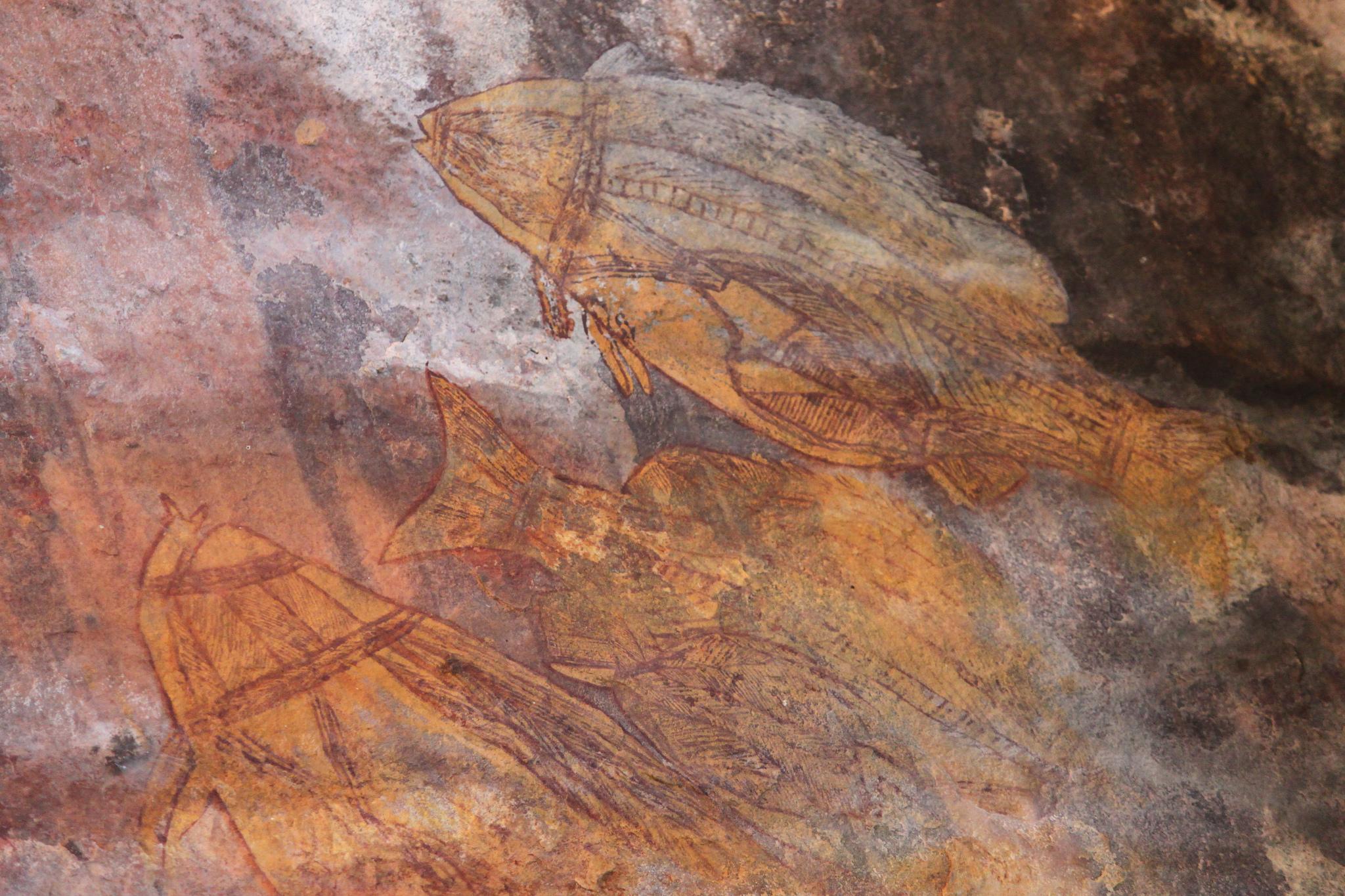 Aboriginal rock art -Ubirr Art Site, Kakadu National Park, Northern Territory, Australia-9June2012 (1).jpg