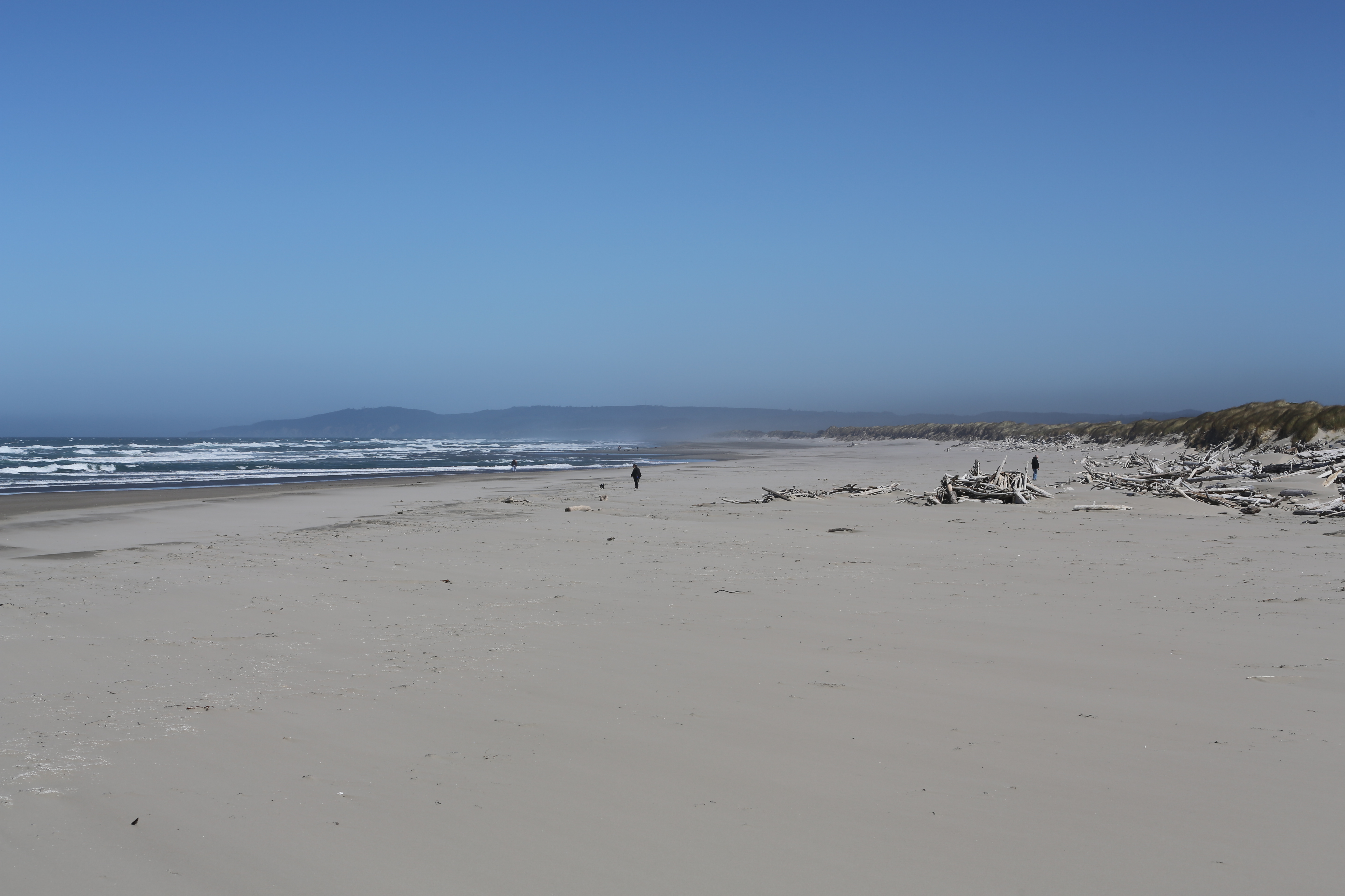 Bandon Beach Riding Stables | | UPDATED May 2020 Top Tips