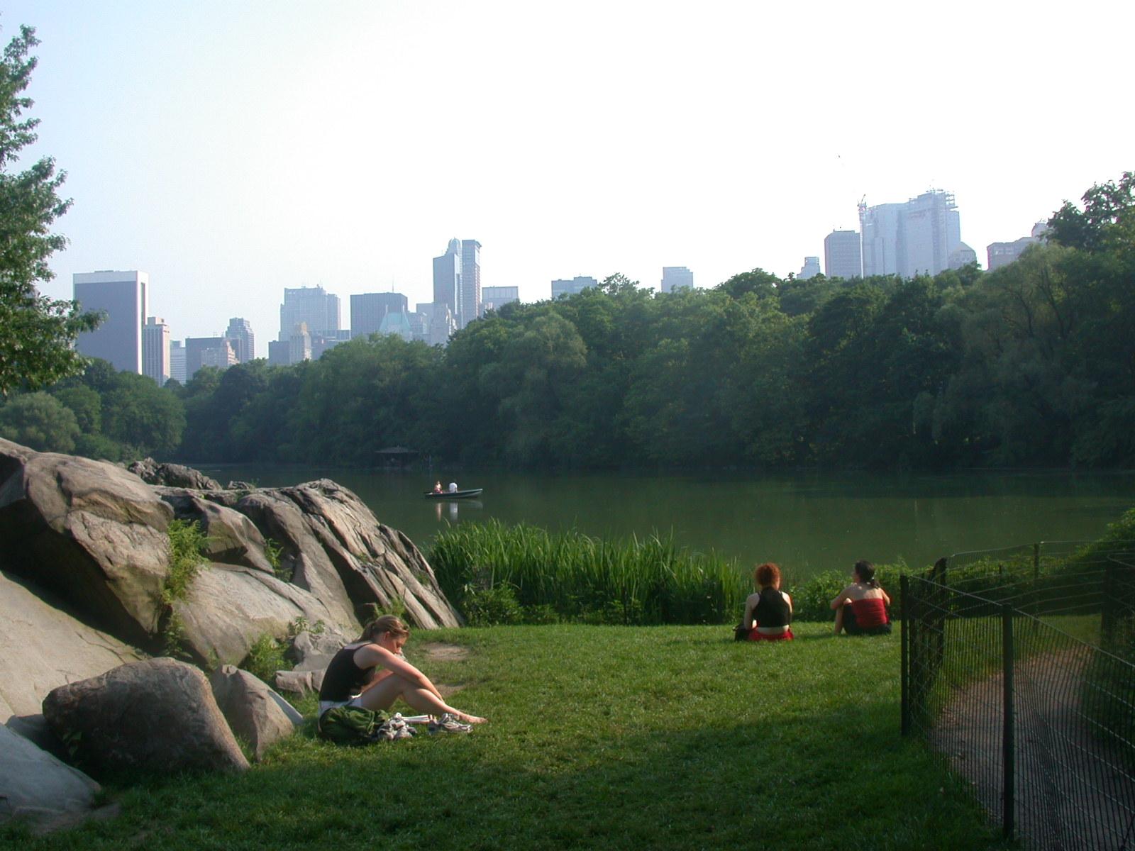 a központi park összekapcsolódik extrovert társkereső introvertált zümmögés