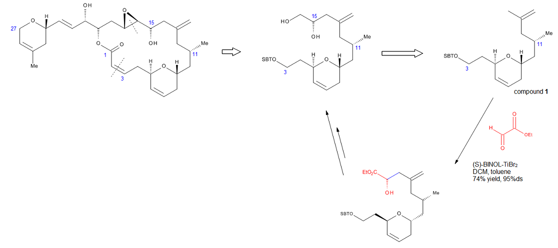 Figure 14. Retrosynthetic analysis of the C3-C16 fragment of laulimalide and use of the ene reaction in its synthesis.