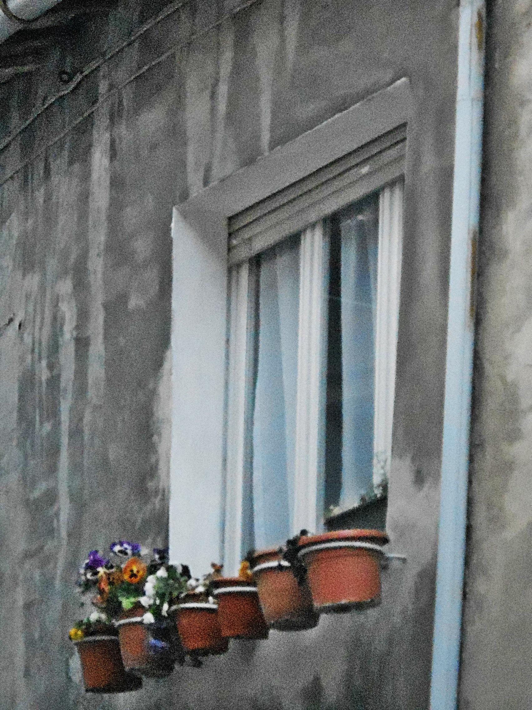 File finestra con vasi di wikimedia commons for Finestra con fiori disegno