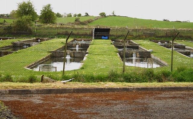 File Fish Farm Ponds