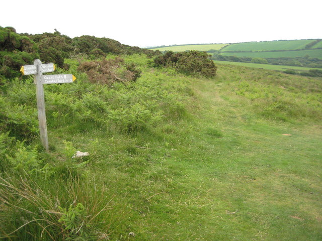 Footpath junction on Holdstone Down - geograph.org.uk - 1597071