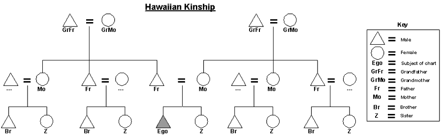 File:Hawaiian Kinship Chart.png Awesome Design