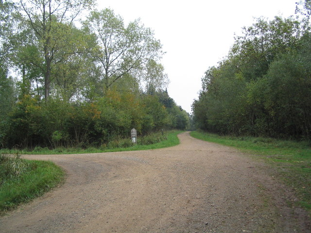 Jurassic Way through Fineshade Wood - geograph.org.uk - 261560