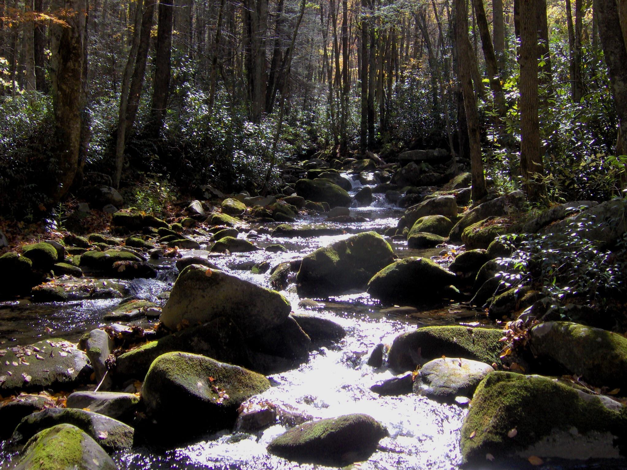 little river - photo #25