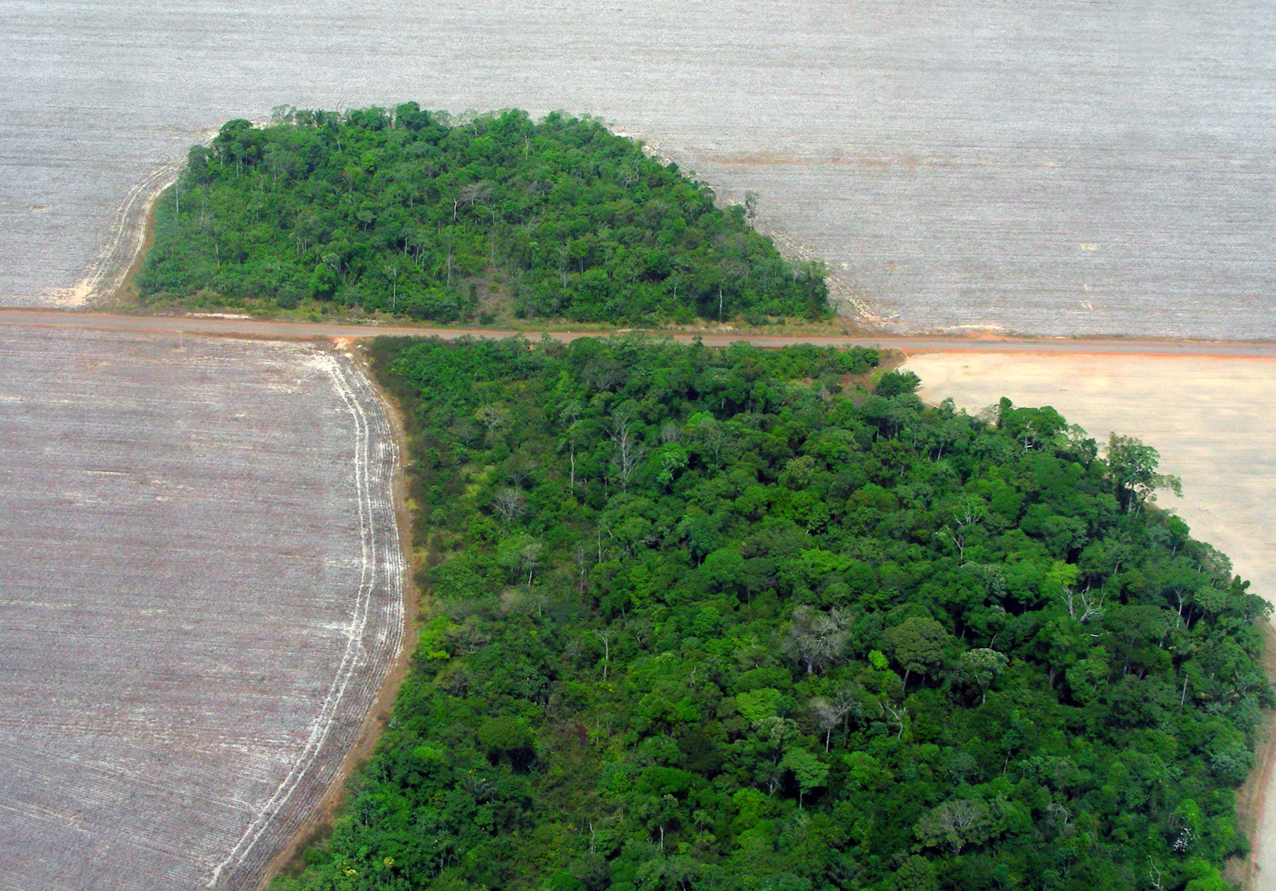 Description Mato Grosso deforestation  Pedro Biondi  12ago2007 jpgAmazon Rainforest Map Deforestation
