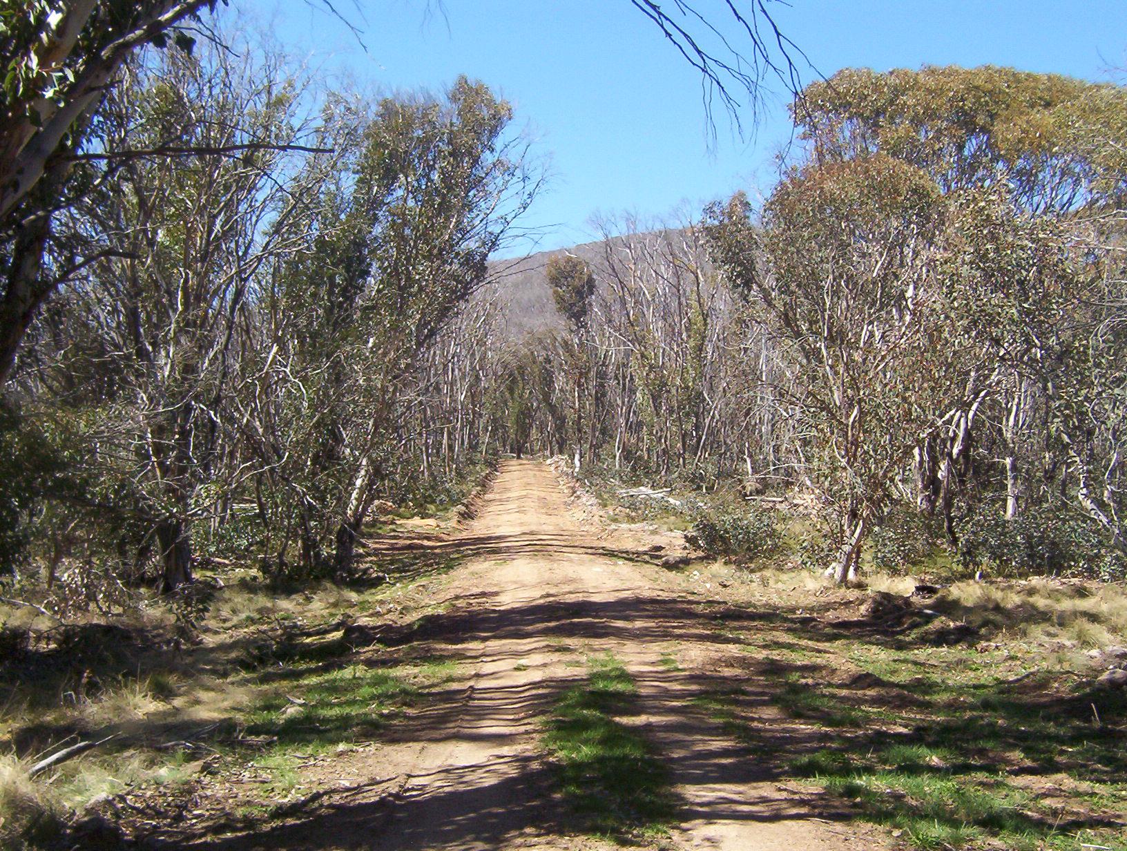 Trekking de Tasmania Australia Guía Para Caminatas Overland Puerto Track Davey Cradle Mountain Sur