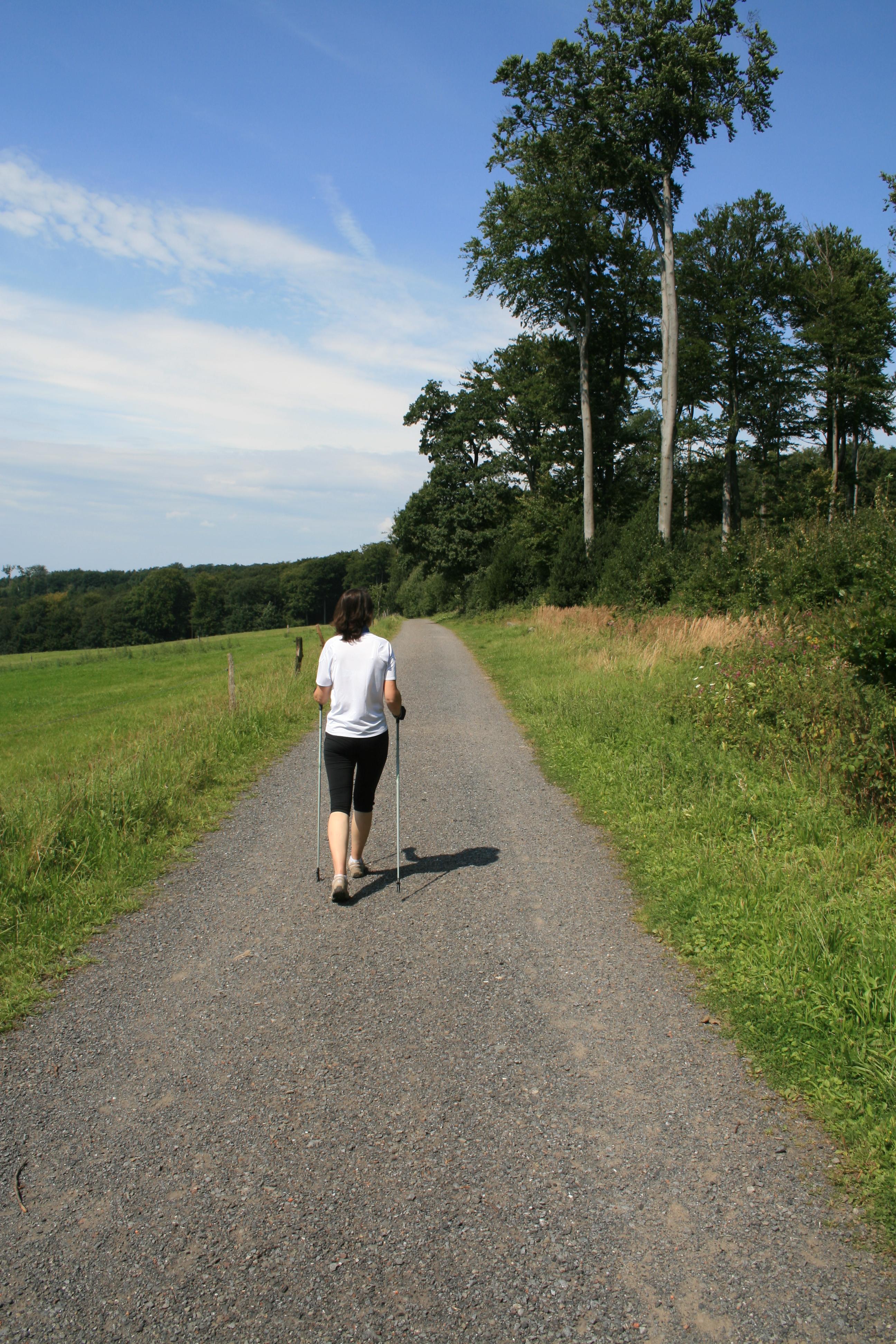 File:Nordic Walking.JP...