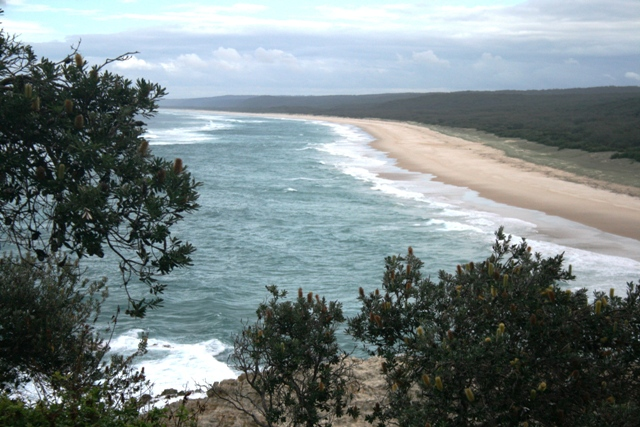 North Stradbroke Island Camping Dog Friendly