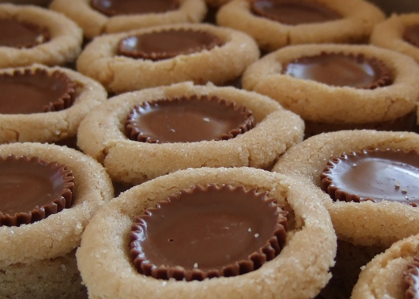 File:Peanut butter blossoms closeup.jpg - Wikimedia Commons