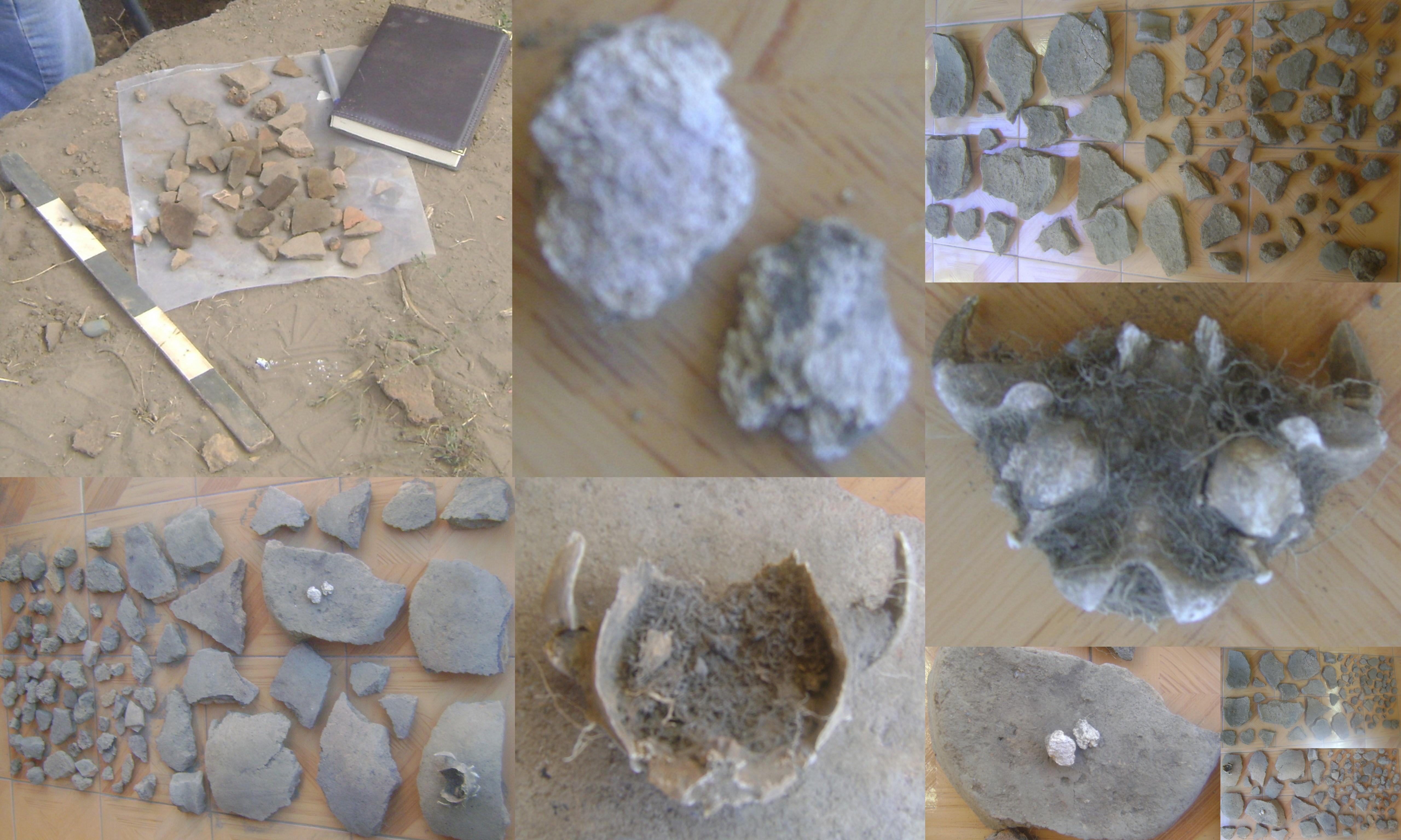 File:Restos de cantaros ceramica hueso y coprolito hallados el 20-2 ...