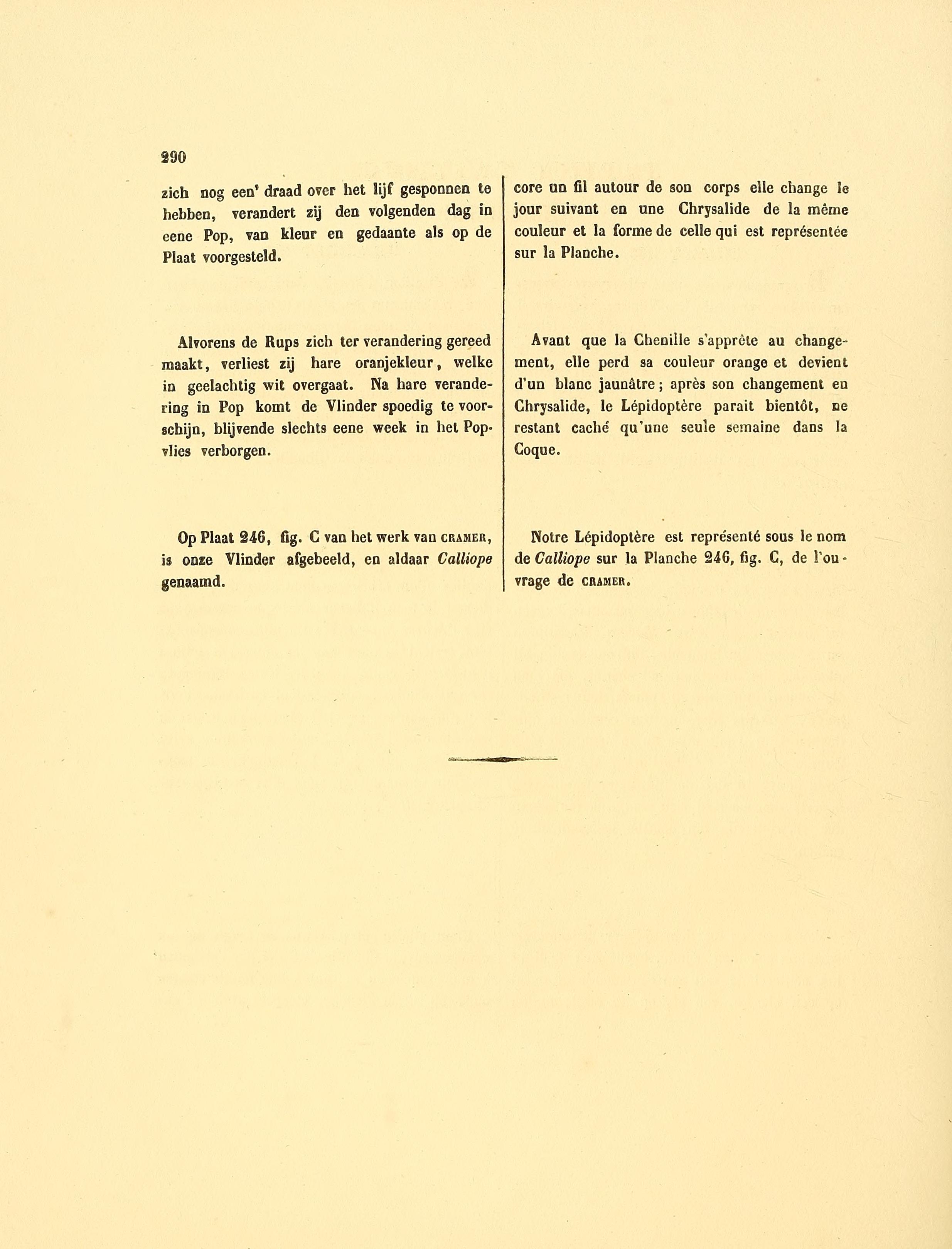 Filesepp Surinaamsche Vlinders Pl 133 Text2 Stalachtis