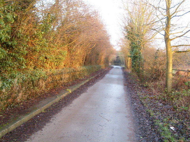 Southwell trail near Kirklington - geograph.org.uk - 640380