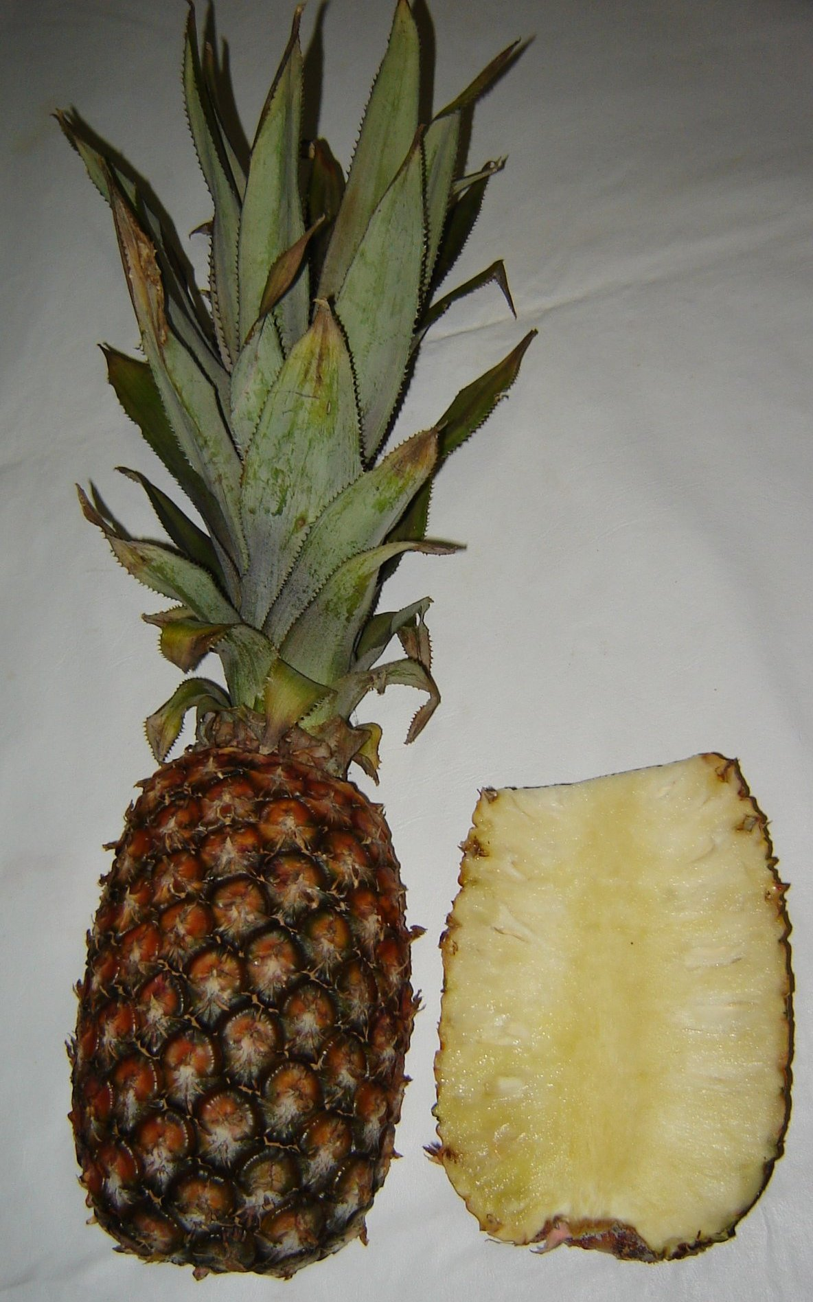 Pineapple Wiktionary