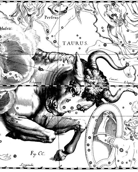 Tauro representa a Zeus convertido en toro.