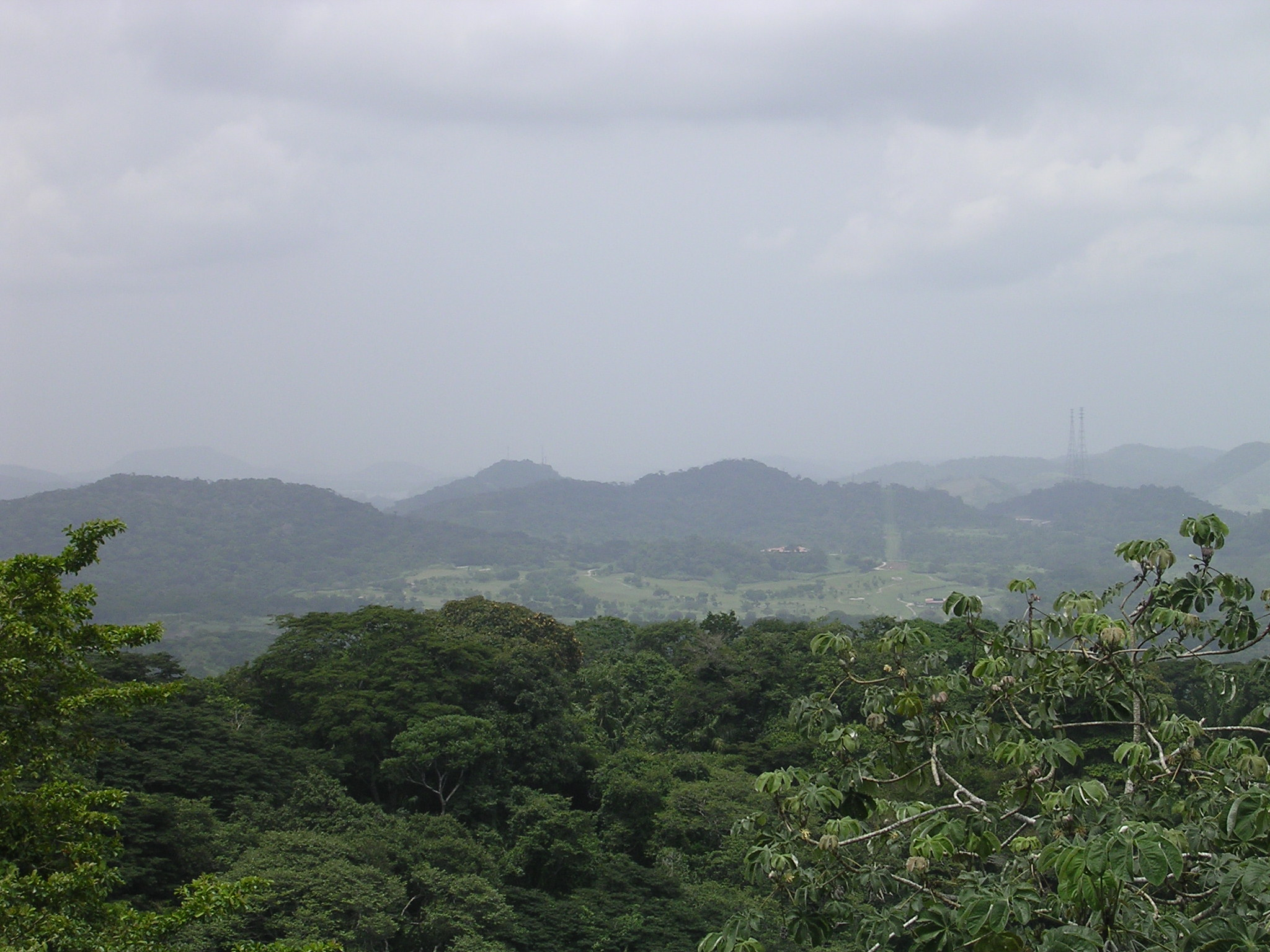 FileView from Canopy Tower in Gamboa Panama 01.jpg & File:View from Canopy Tower in Gamboa Panama 01.jpg - Wikimedia ...